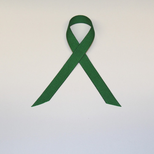 "3/8"" Grosgrain Ribbon Kelly Green"