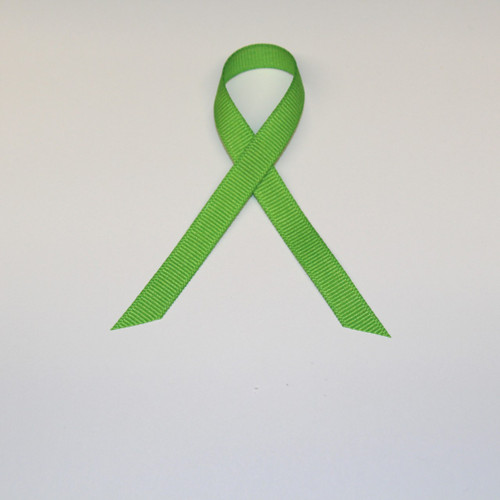 "3/8"" Grosgrain Ribbon Lime Green"
