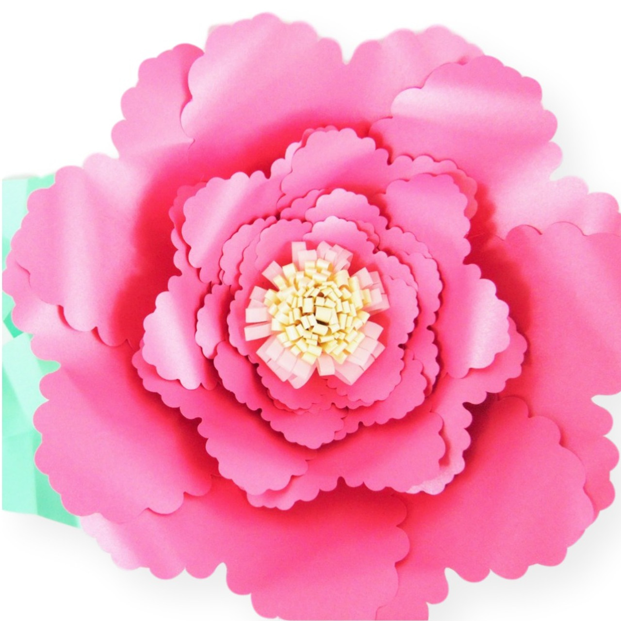 Valerie Style Diy Giant Paper Flower Templates Catching Colorflies