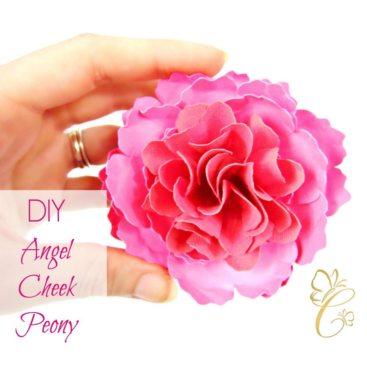 Angel Cheek Peony Paper Flower Template