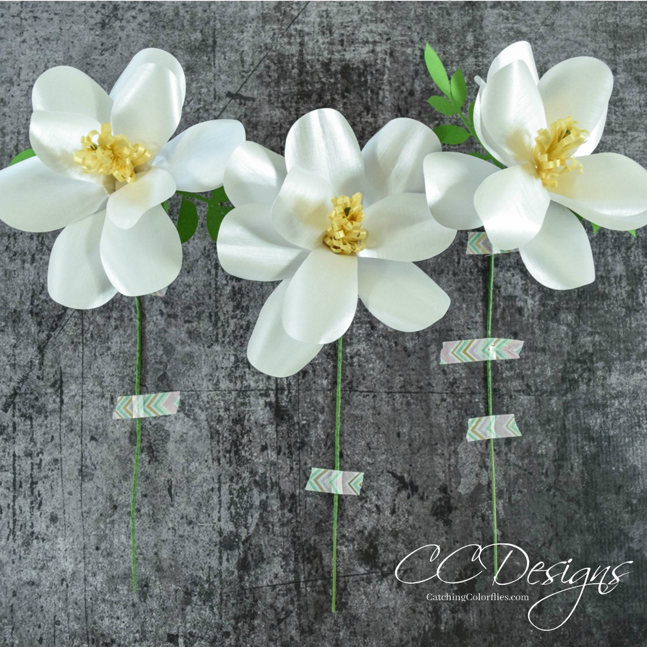 Southern Magnolia Paper Flower Template Catching Colorflies