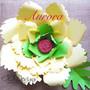 Aurora paper flower.