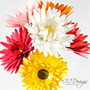 Small Gerbera Daisy Paper Flower Template