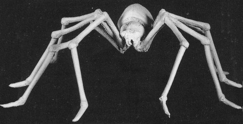 M103 Giant Spider