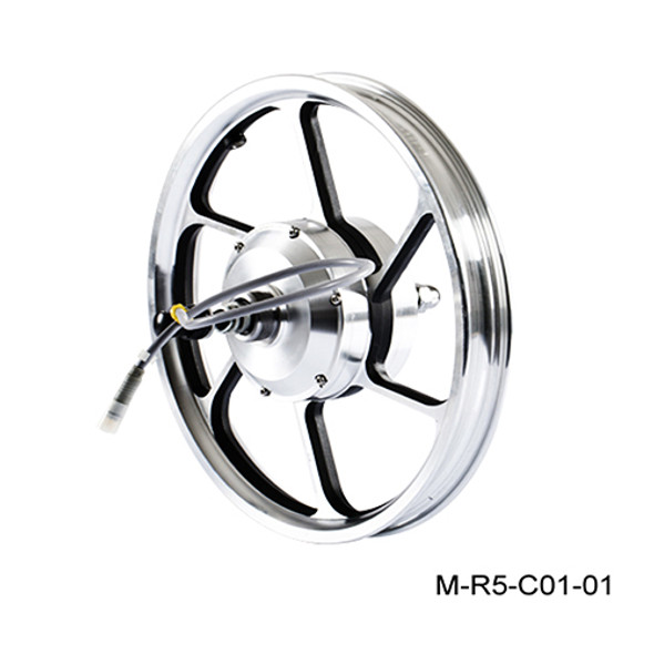 Airwheel R5 REAR MOTOR WHEEL