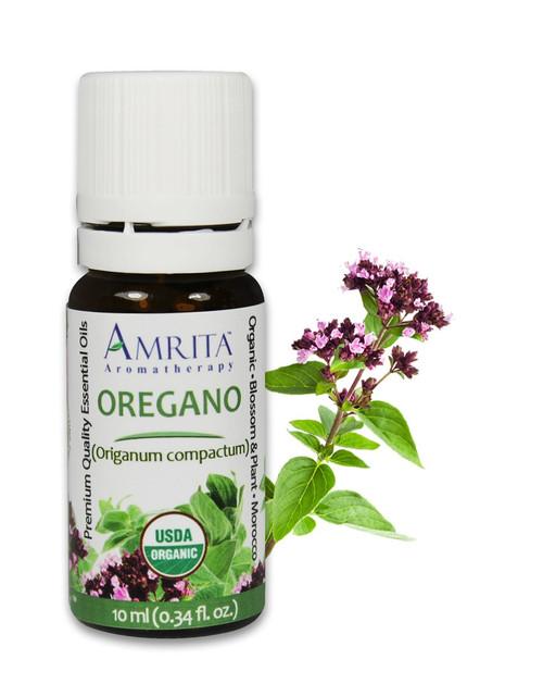 Oregano Morocco Essential Oil Organic