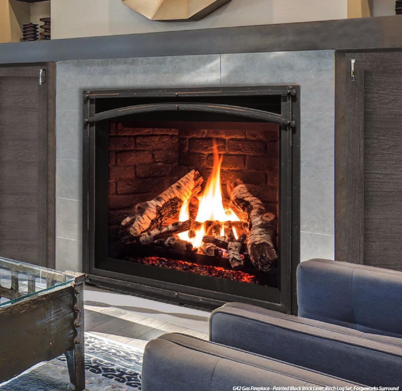 Cool Enviro G42 Gas Fireplace Download Free Architecture Designs Scobabritishbridgeorg