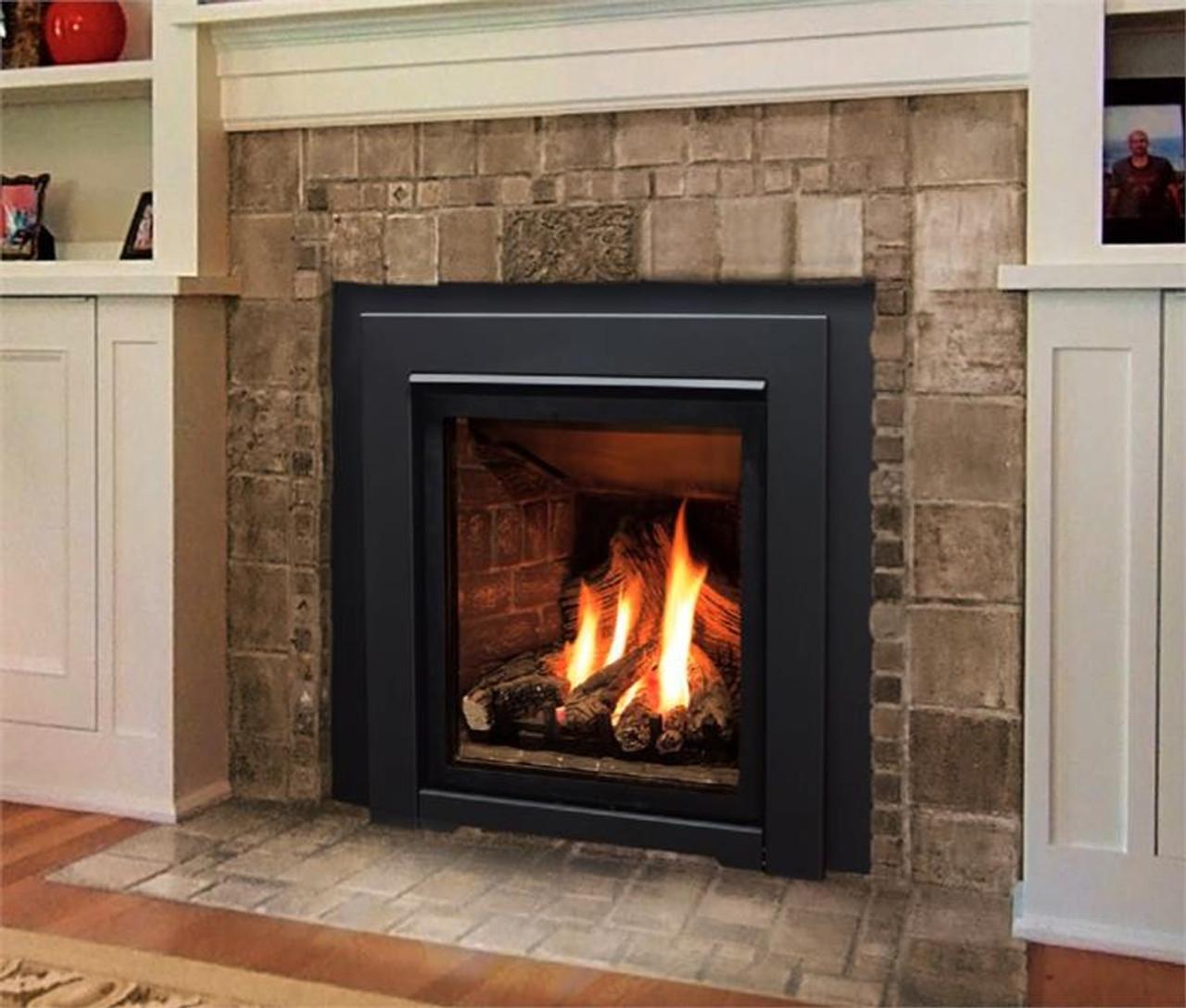 Pleasant Enviro Q1 Gas Fireplace Fireplace Insert Download Free Architecture Designs Scobabritishbridgeorg