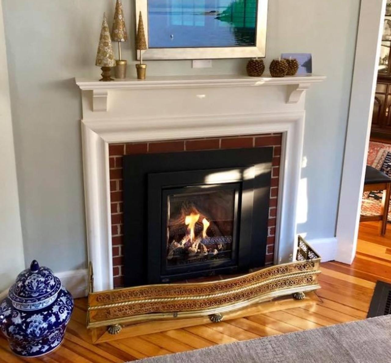 Enviro Q1 Gas Fireplace & Fireplace Insert