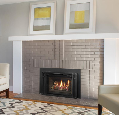 Regency LRI4E Gas Fireplace Insert
