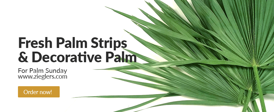 order-and-buy-palm-strips-and-decorative-palm-for-palm-sunday-at-zieglers-catholic-church-supply-store-category.png