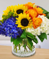Best Flowers for Leos in Your Life