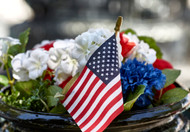 Celebrate the 4th of July Weekend with Flowers from Palace Florists