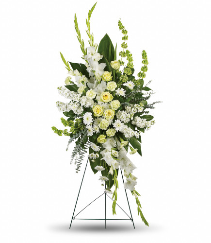 Magnificent Life Spray showcases green roses, green carnations, white gladioli, white stock, white cushion spray chrysanthemums and bells of Ireland  accented with foliage in Rockville MD, Palace Florists