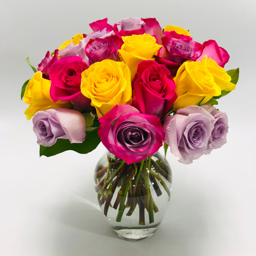 DC Rainbow - 25 Short Stem Colored Roses- Colors May Vary from Picture