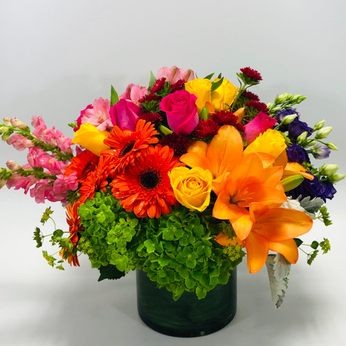 Color Burst in Rockville MD, Palace Florists