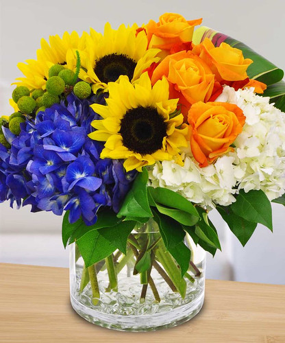 Sunshine Daydreams in Rockville MD, Palace Florists