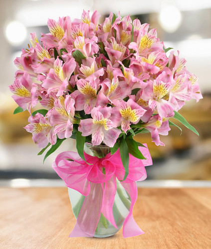 All About Alstroemeria, in Rockville MD, Palace Florists