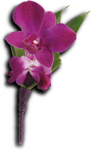 Purple Orchid Boutonniere  in Washington DC and Rockville MD, Palace Florists