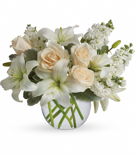 Isle of White with crème or white roses, white asiatic lilies and white stock stems arranged in a bubble vase in Rockville MD, Palace Florists