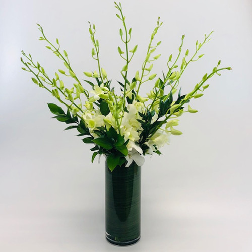 Elegant Dendrobium Orchids in a clear cylinder with a leaf wrap in Bethesda MD, Palace Florists