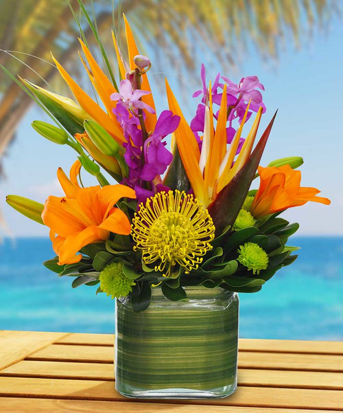 Tropical Blossoms takes you to the tropics with Birds of Paradise, orchids, lilies, and protea in Rockville MD, Palace Florists
