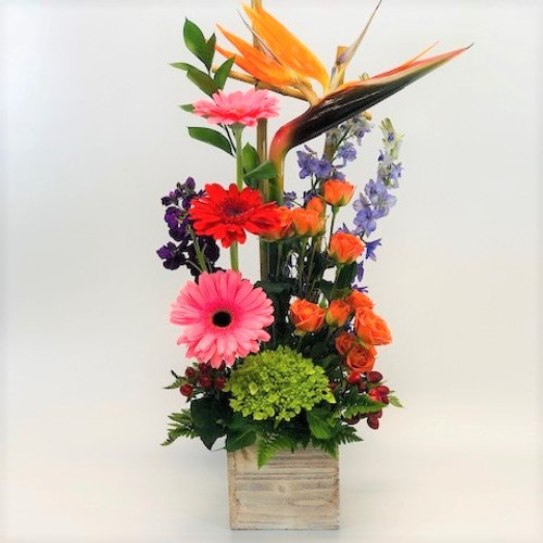 Signature Contemporary Cube of birds of paradise, gerber daisies, curly willow and other beautiful flowers in a wooden cube in Washington DC and Rockville MD, Palace Florists