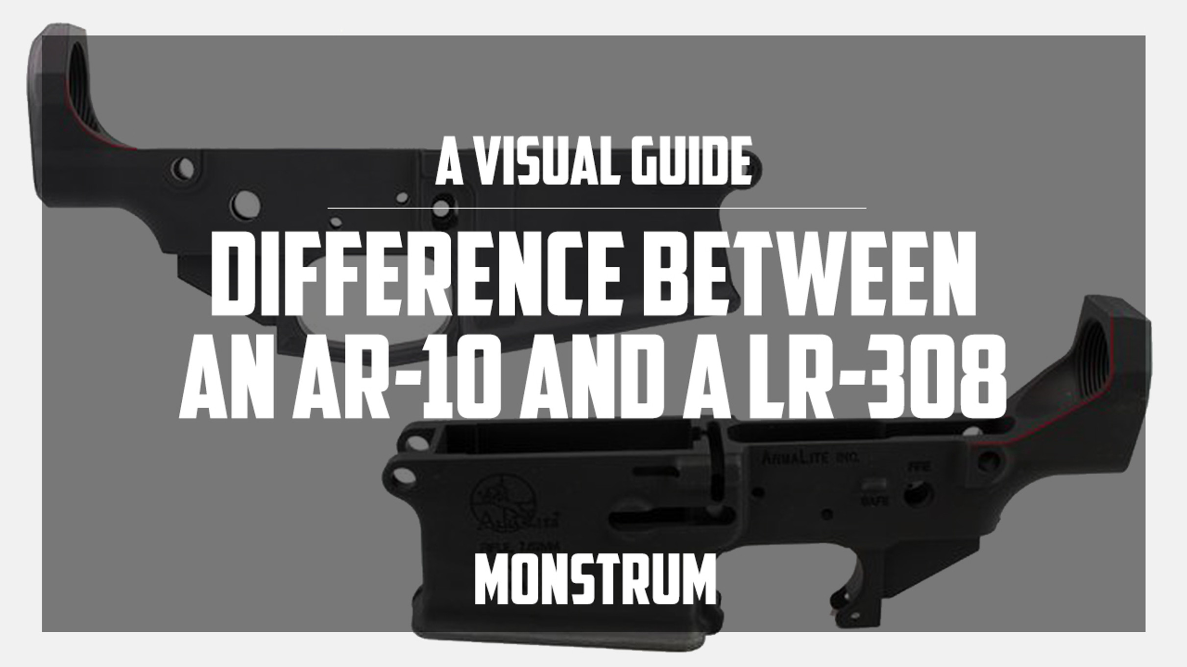 What is the Difference Between an AR-10 and an LR-308?