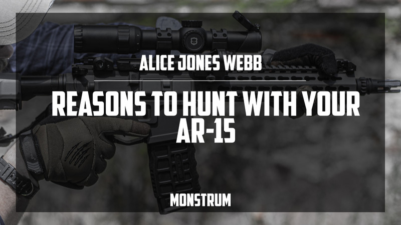 ​Reasons to Hunt With Your AR-15