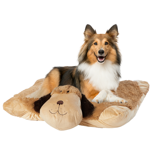 pet bed lifestyle
