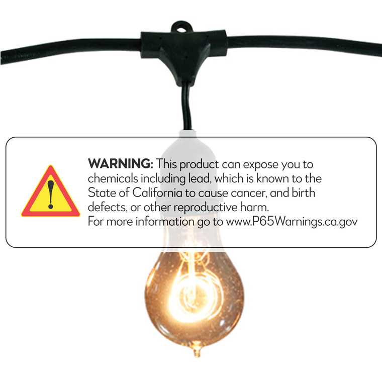 Bulbrite: 810004 FIXTURES String Lights: Commercial Use Watts: 25 - STRING15/E26-A19KT (1 Pack)