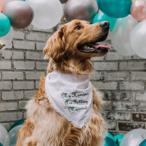Personalized Pet Bandana Wedding White