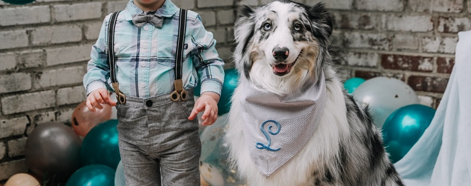 personalized-pet-bandana.jpg