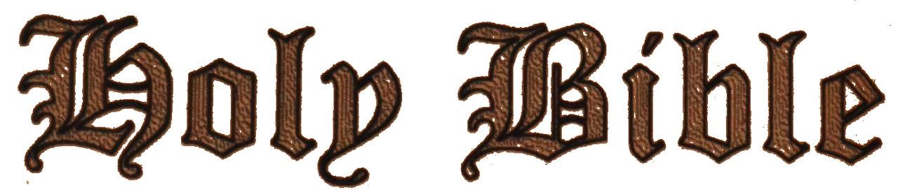 Tan Brazilian Leather Bible Gun Case With Engraved Letters LRG/SM Guns