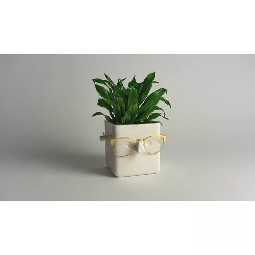 White Ceramic Face Planter and Eyeglass Holder