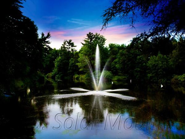 Clover Decorative Pond Fountain