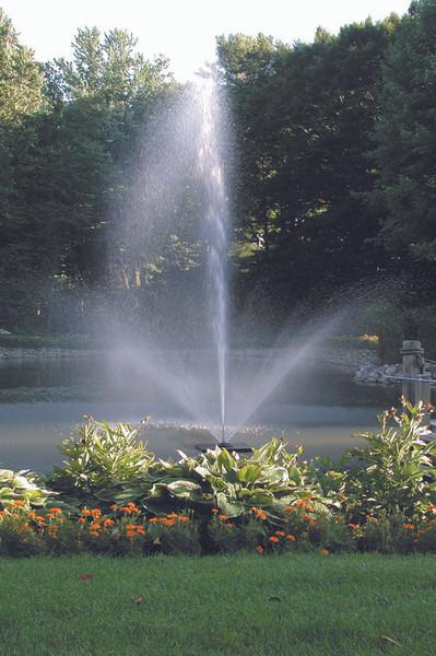 Skyward decorative fountain, .5 hp