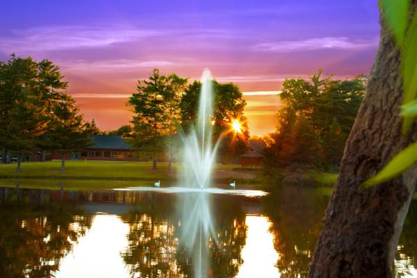 atriarch decorative pond fountain