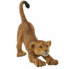 African Lion Cub Stretching Replica   CollectA