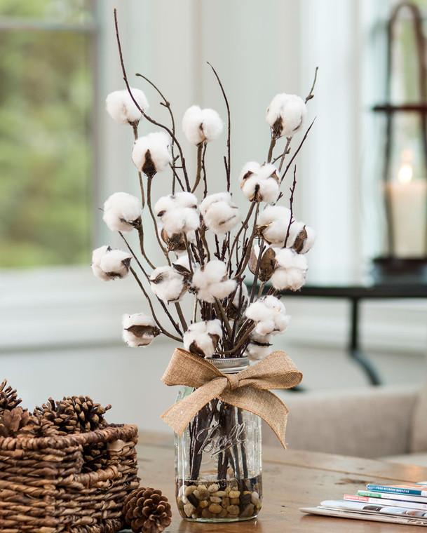 Cotton & Birch Accent