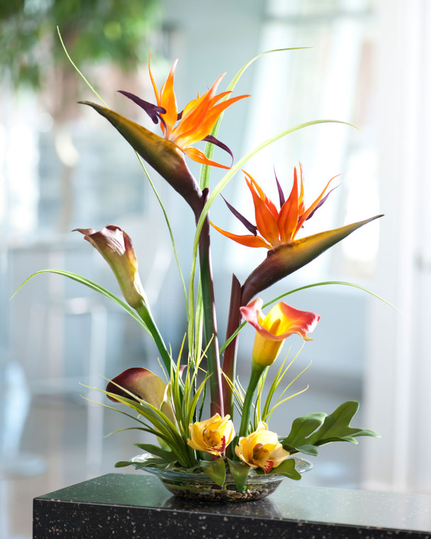 Bird of Paradise & Calla Lily
