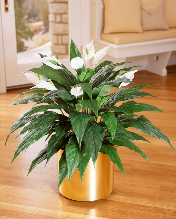 Spathiphyllum Silk Plant with Elegant Peace Lilies