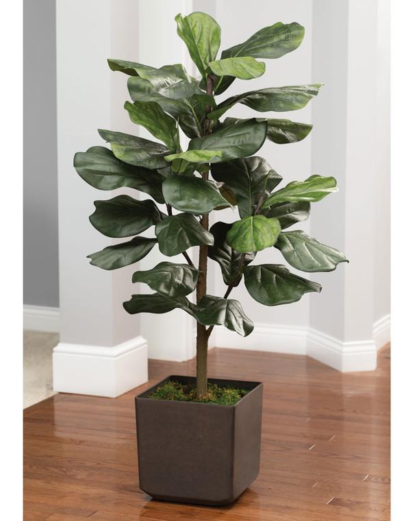 4' Faux Big Leaf<br>Fiddle Fig Plant