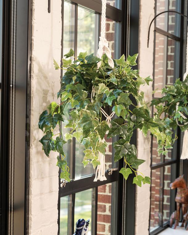 Hanging English Ivy Silk Foliage Plant
