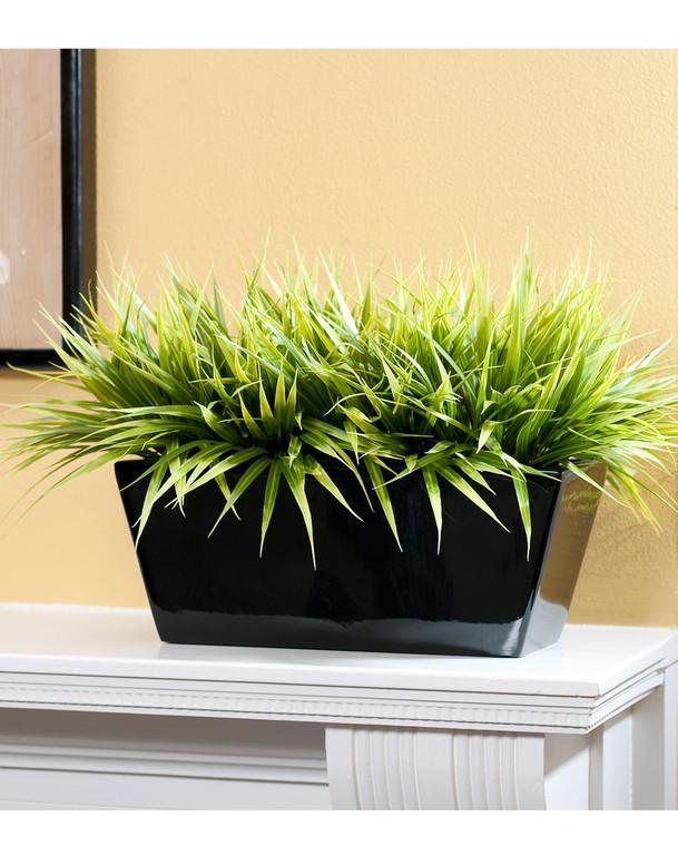 Bermuda Grass File Topper