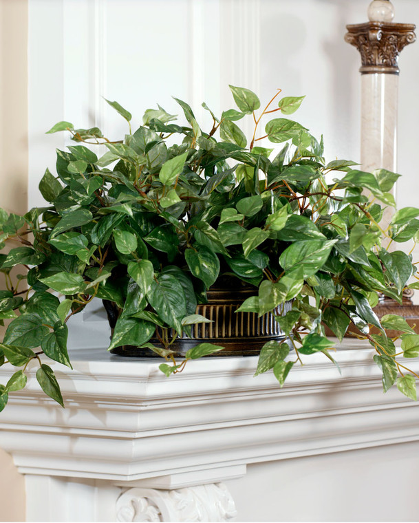 Lush Silk Ivy Pothos Silk Plant in Oval Container