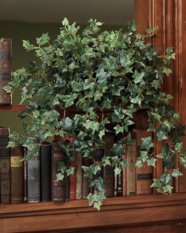 Cascading English Ivy Silk Planter