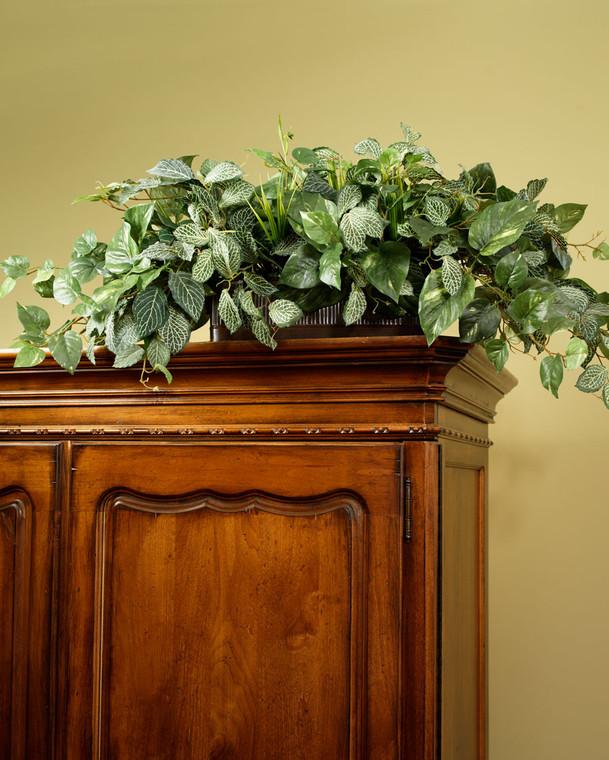 Silk Pothos & Fittonia Armoire Topper