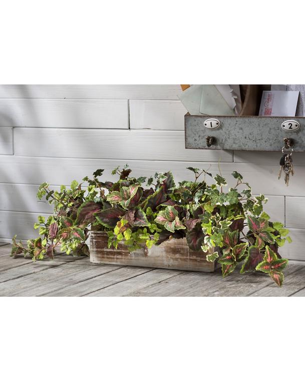 Coleus & Maidenhair Fern Silk Foliage Arrangement