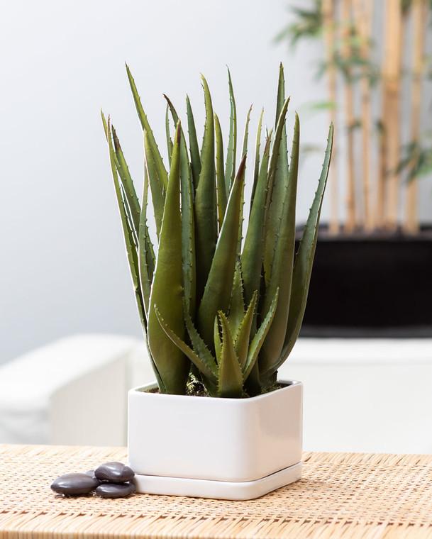 Aloe Succulent Faux Tabletop Plant